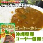 沖縄島カレー!ゴーヤーカレー [180g]